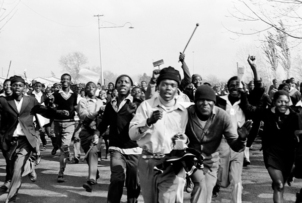 The Young Lions, Soweto