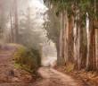 Image Source: http://harold.wpengine.netdna-cdn.com