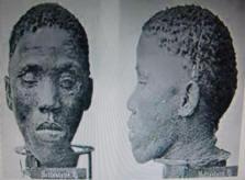 Eugen Fischer Nama Heads 18