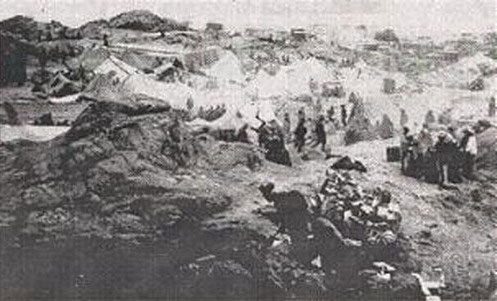 Shark Island Death Camp